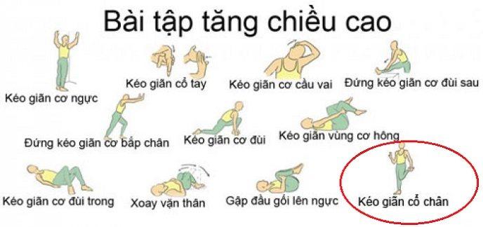 phuong-phap-tang-chieu-cao-hieu-qua-1
