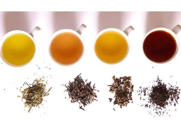 Nguyên liệu trà để pha trà sữa